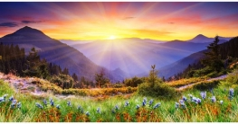 জান্নাতের সুসংবাদপ্রাপ্ত ১০ জন সাহাবী