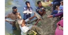 প্রযুক্তির মাধ্যমে দক্ষিণাঞ্চলে কার্প জাতীয় মাছ চাষে নতুন সম্ভাবন