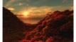 ওয়াহী নাযিল: ধারাবাহিক পর্ব ৪